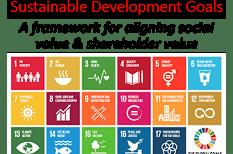 Public Private Partnerships: CSR & Shared Value Partnerships for the SDGs