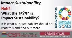 Impact Sustainability