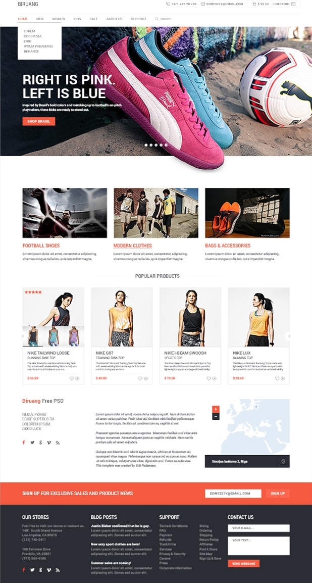 Biruang E commerce PSD website Template