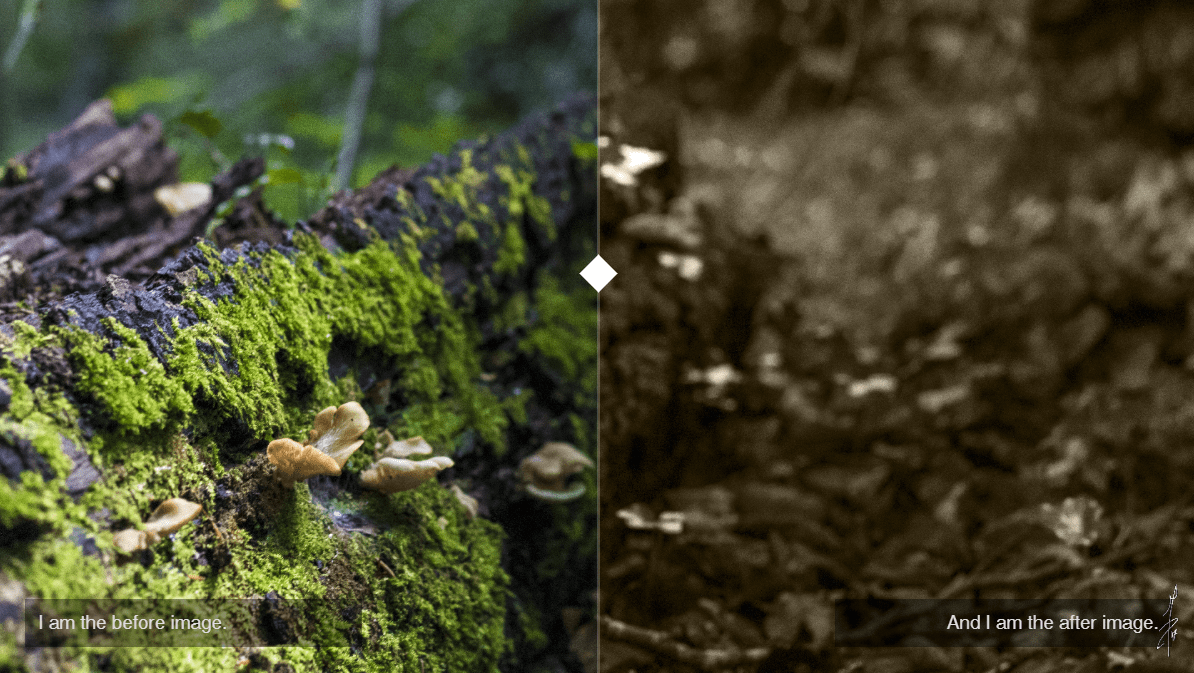 Fully Responsive Simple Clean Image Comparison Slider