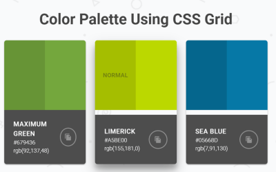 HTML Color Palette Using CSS Grid