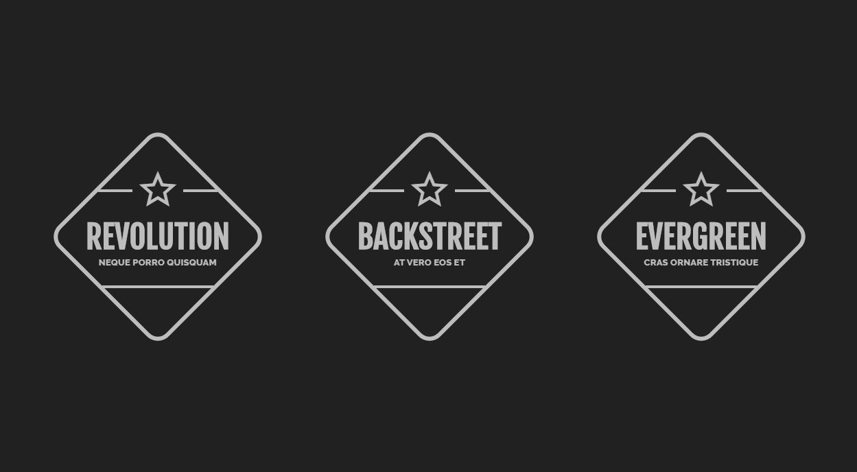 CSS Diamond Based Logo Icon And Slogan