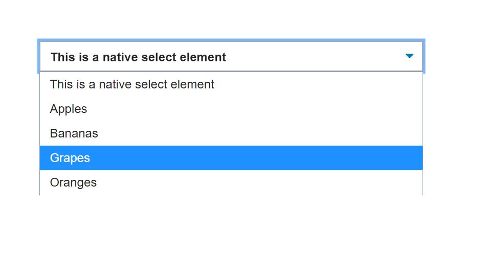 CSS Select Box Dropdown Menu Design