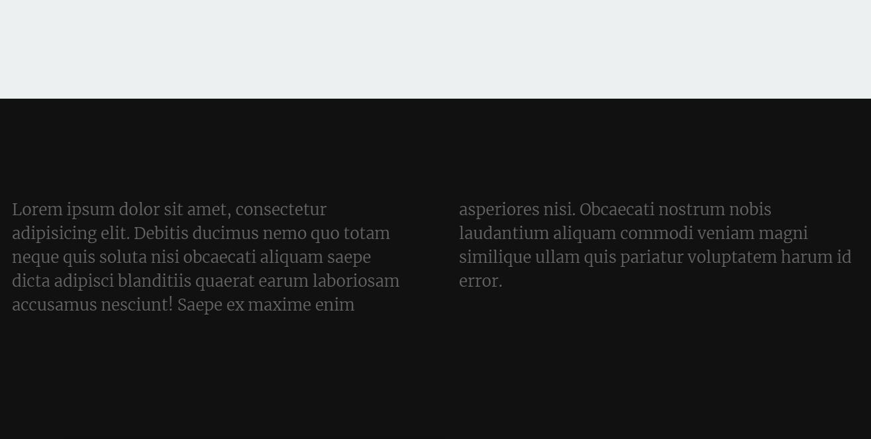 HTML CSS Fixed Website Bottom Footer