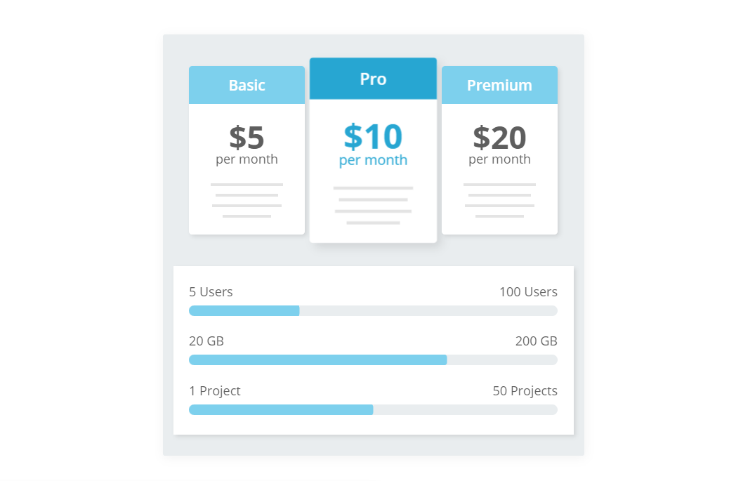 CSS Animated Price Table Select Plan Example