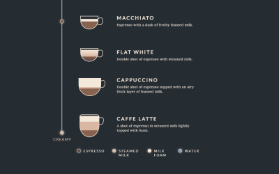 Simple Pure CSS Infographic Display Types of Coffee