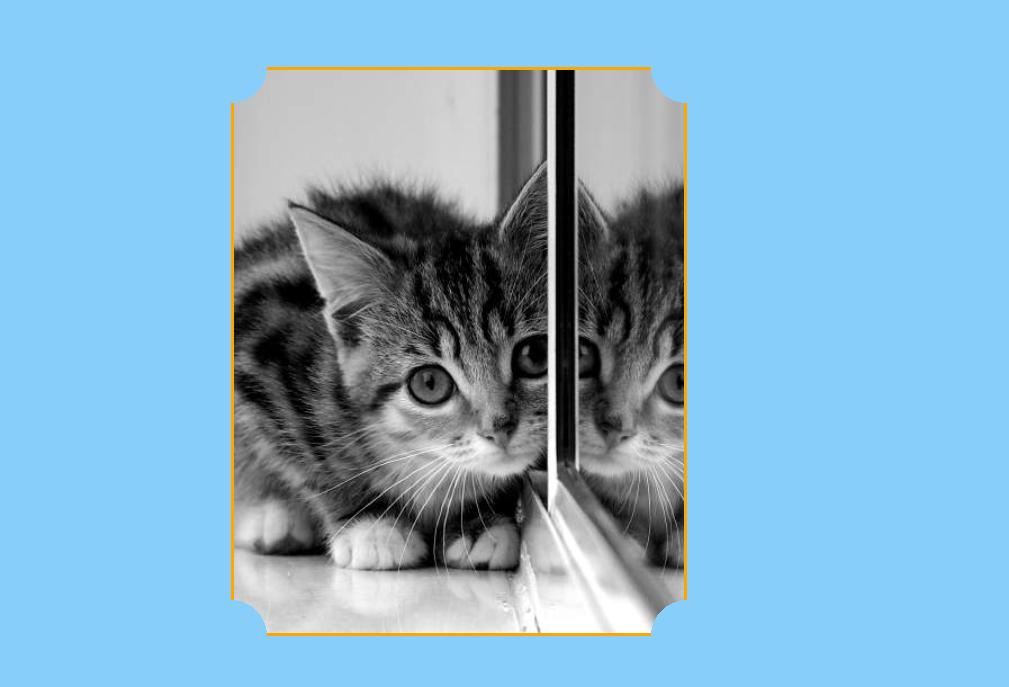 Image Border Corner Shape Using CSS