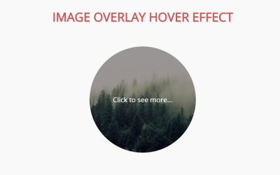 Image Hover Overlay Using HTML And CSS