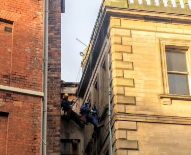 Abseiling Pest Control