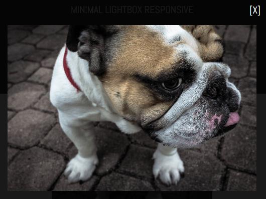 Minimalist Responsive Image Lightbox Library – minimal.lightbox.js