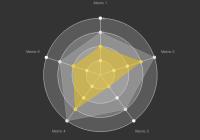 maturity-radar