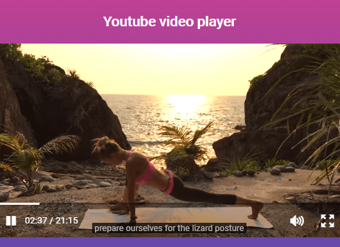 Custom HTML5 And Youtube Video Players – vLite.js