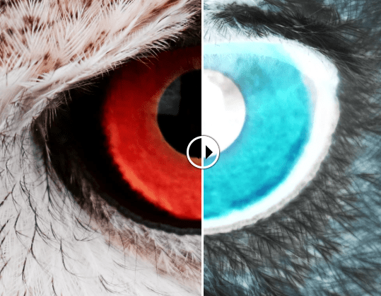 Compare Two Layered Images With A Slider – Scrub Slider