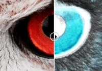 Scrub Slider Image Comparison Slider-min
