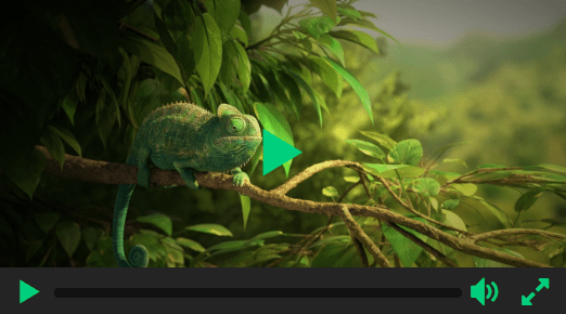 Beautiful HTML5 Video Player In Pure JavaScript – Ckin-Video-Player