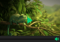 Beautiful HTML5 Video Player In Pure JavaScript - Ckin-Video-Player