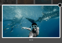 Beautiful Image Gallery Lightbox In Vanilla JS - Gallery Box