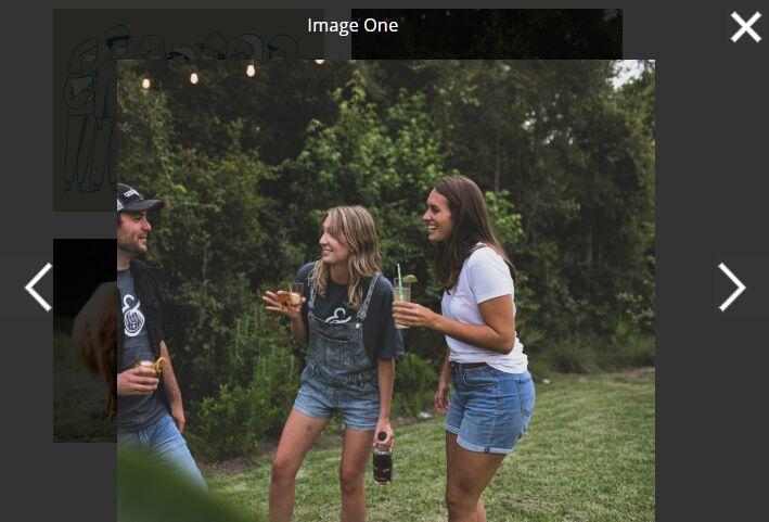 Tiny Image & Video Image Gallery Lightbox In JavaScript – Bilderrahmen