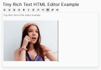Tiny Rich Text HTML Editor In JavaScript - textEditor.js