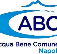 """Azienda Speciale """"Acqua Bene Comune Napoli"""": Avviso pubblico diretto alle Associazioni di Protezione Ambientale per entrare nel CdA"""