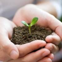 Assicurazioni e conti corrente: al CSV Napoli si presentano le opportunità che fanno crescere il no profit