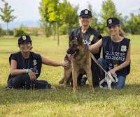 Corso di formazione e aggiornamento sulla normativa inerente il maltrattamento degli animali