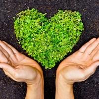 La Sostenibilità è Glocal: premio sulle pratiche di consumo sostenibile