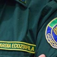 Corso di formazione e aggiornamento per guardie zoofile