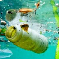 Cercasi  volontari per la salvaguardia dei mari