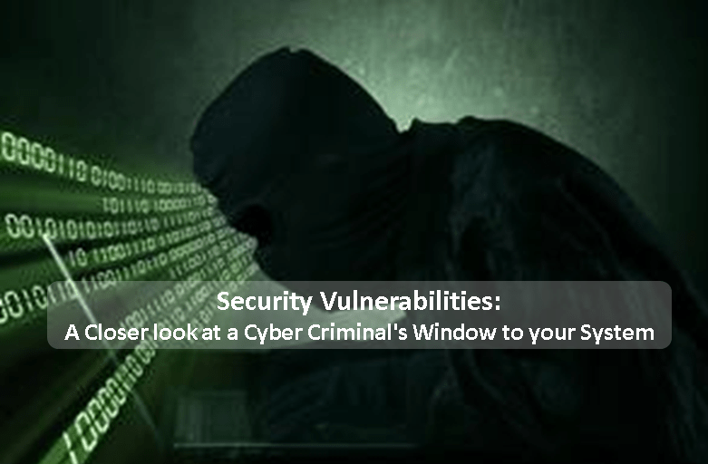 Security Vulnerabilities: A Closer look at a Cyber Criminal's Window to your System