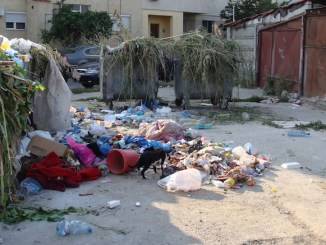 Mizerie și gunoaie în cartierul Dacia din Constanța. FOTO TNL