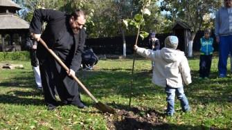 Plantare de copaci la biserica Sf. Mina din Constanța. FOTO Adrian Boioglu