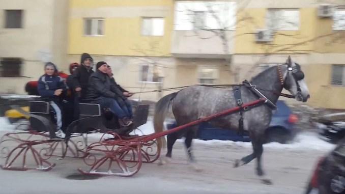 Sanie trasă de cal la Constanța. FOTO captură video