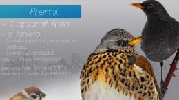 Concurs foto la Complexul Muzeal de Științe ale Naturii Constanța