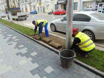 Gazonul montat de muncitorii în județul Constanța