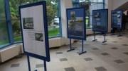 """Expoziția """"Oameni și balene"""" la Delfinariu. FOTO Adrian Boioglu"""