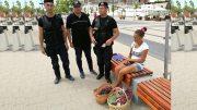 Polițiștii locali i-au numărat... murele