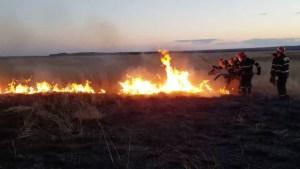 Incendiu de vegetație. FOTO ISU Dobrogea