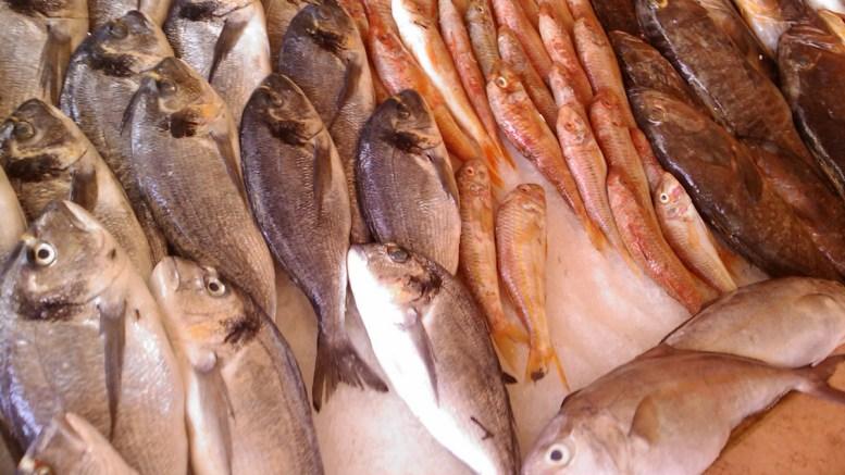 Piața de pește. FOTO Tark Siala