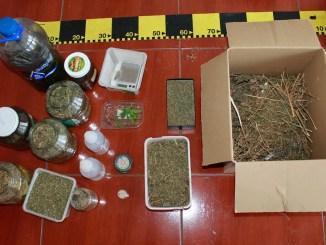 Captură de cannabis la Constanța. FOTO Poliția Română