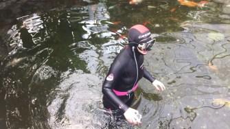 Sacafandru in iazul cu pești adunand banii