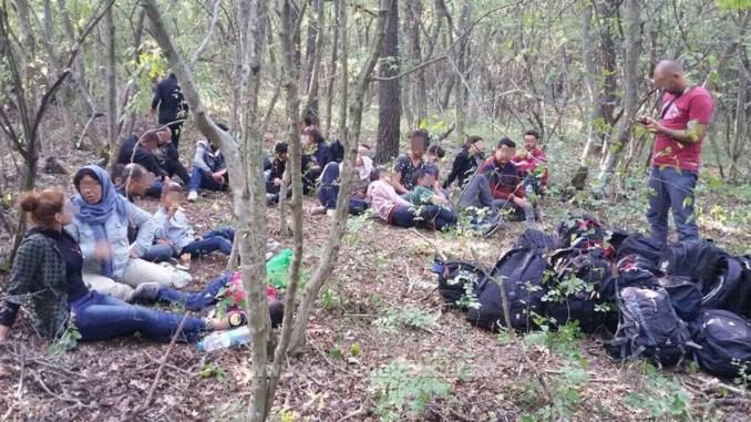 Migranți prinși de Garda de Coastă la Negru Vodă. FOTO Poliția de Frontieră