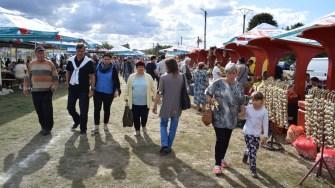 Oameni din tot judetul au mers la Cumpana pentru a participa la Festivalul Rodul Pamantului