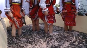 Așa se face mustul la Târgul Toamnei de la Ovidiu. FOTO CTnews.ro