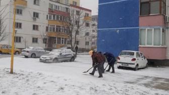 Angajații Polaris au curățat și trotuarele de zăpadă. FOTO Primăria Constanța