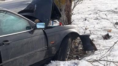 Mașina scăpată de sub control s-a izbit într-un pom. FOTO IPJ Constanța