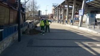 "Angajații Polaris continuă campania ""Curățăm Constanța Noastră"". FOTO Polaris M Holding"