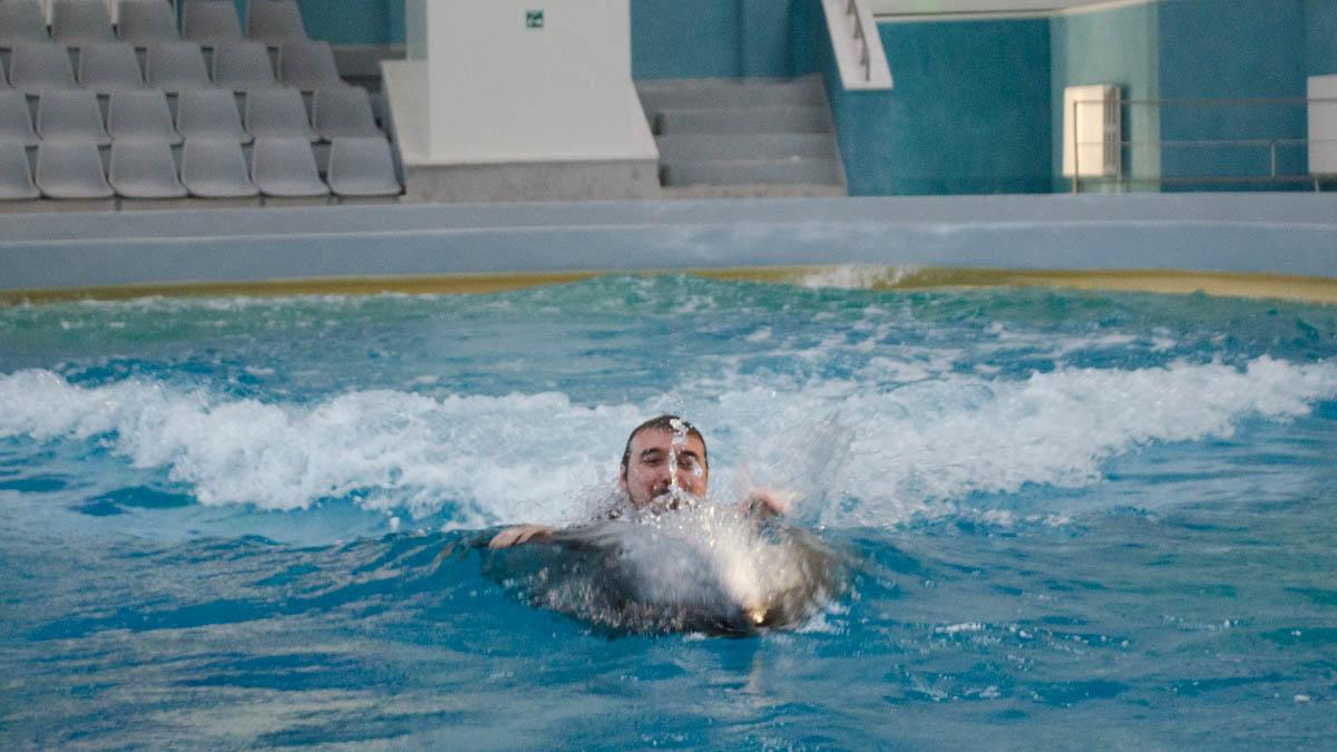 Delfini Delfinariu (67)