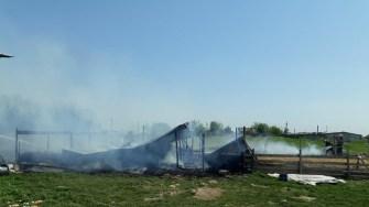 Saiivanul a ars în totalitate, focul izbucnind de la o țigară aruncată la întâmplare. FOTO ISU Dobrogea