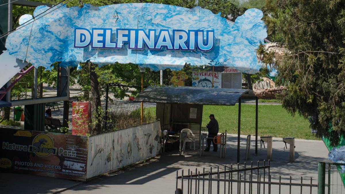 delfinariu (2)